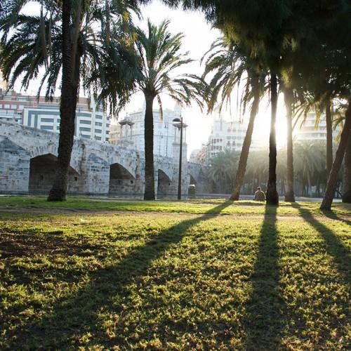 Парк Турия в Валенсии. Parque de Turia, Valencia